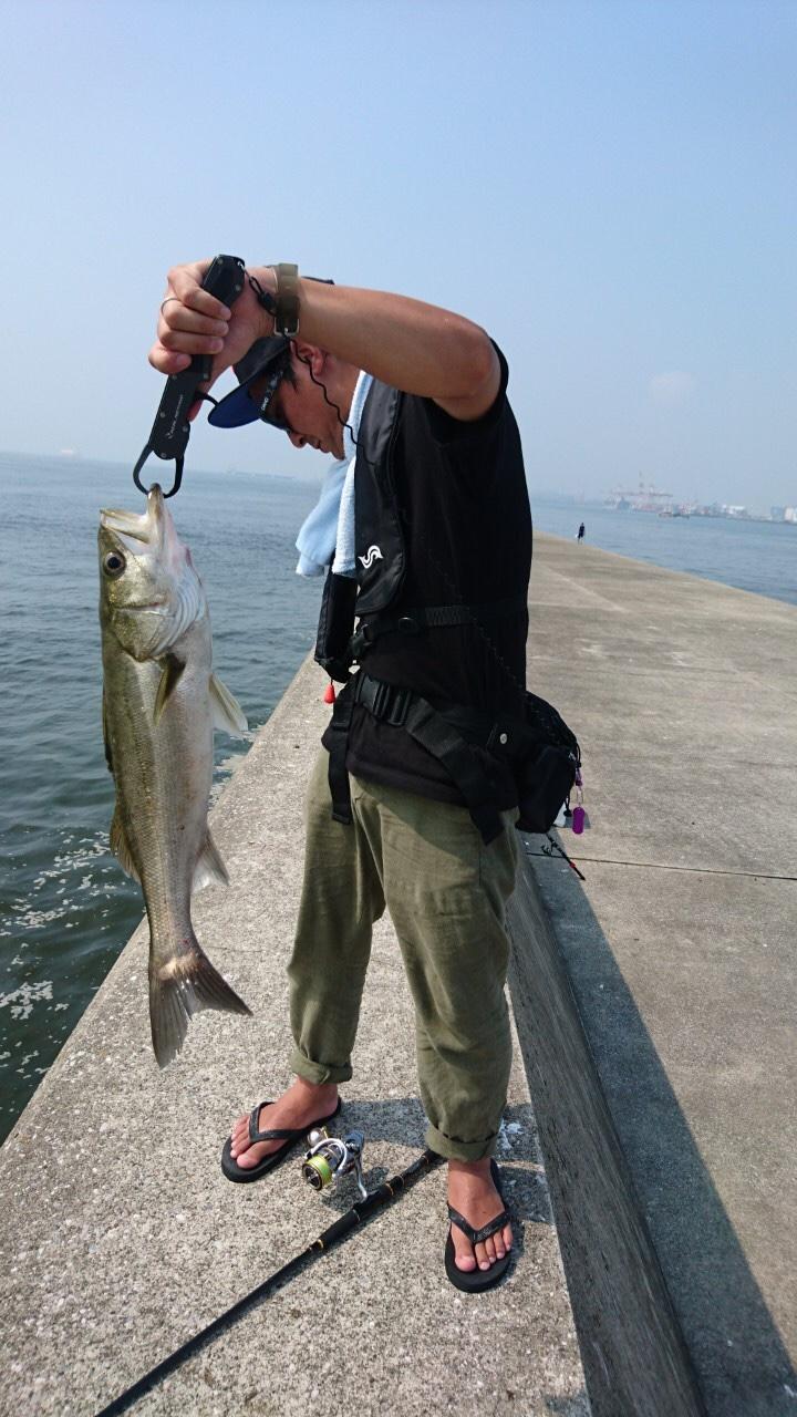 横浜湘南釣りブログ